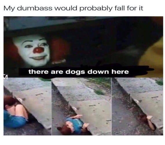 Pennywise Dogs Meme
